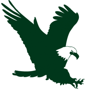 Swift Eagle CMYK Green