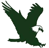 swift-eagle-logo-square