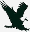 Swift Eagle Charitable Foundation